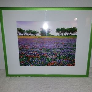 Scenic wall art, 3 pictures in colorful frames